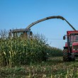 Most EU nations seek to bar GM crops