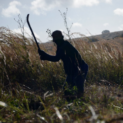Film: Seeds of Discontent- Land grabbing, food security and human rights in Mozambique